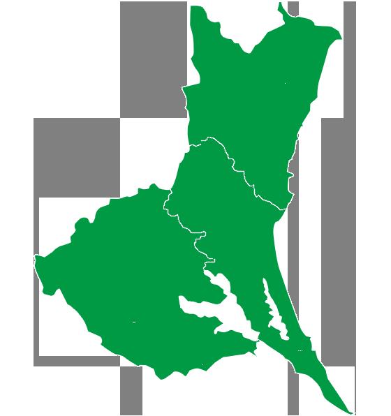 ヨークベニマル 東海村 チラシ